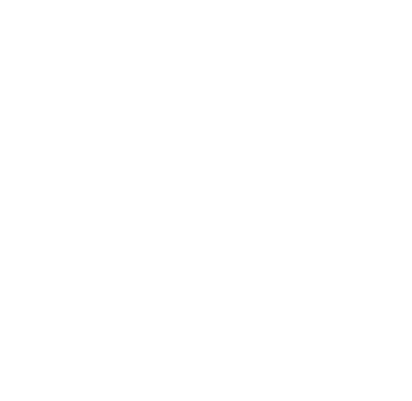 WE HAVE MORE THAN 20 YEARS OF EXPERIENCE AT OUR DISPOSAL